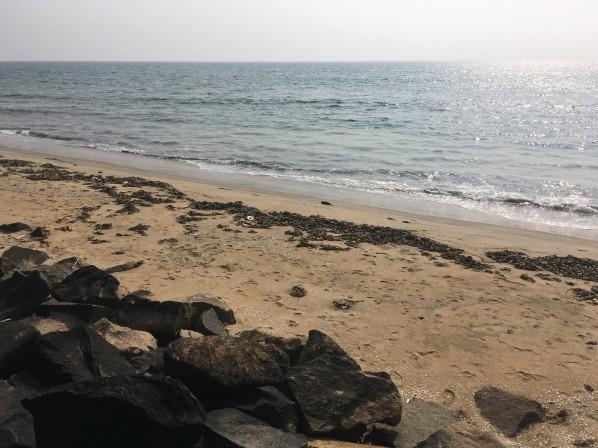 Cherai beach 2